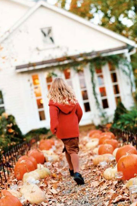 A walkway lined with an eclectic assortment of pumpkins sets the tone for fall decor.