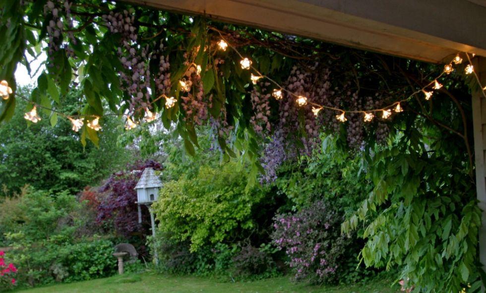 garden-ideas-on-a-budget-outdoor-fairy-lights