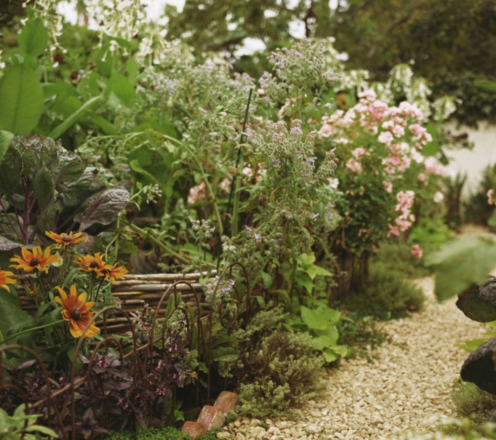 garden-ideas-on-a-budget-gravel-path