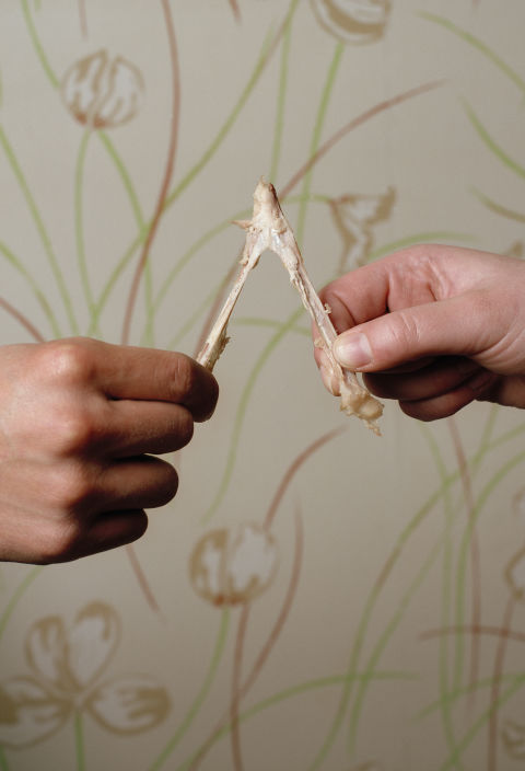 However weird it may seem, the wishbone is an age-old Thanksgiving tradition we love, just for old times' sake.