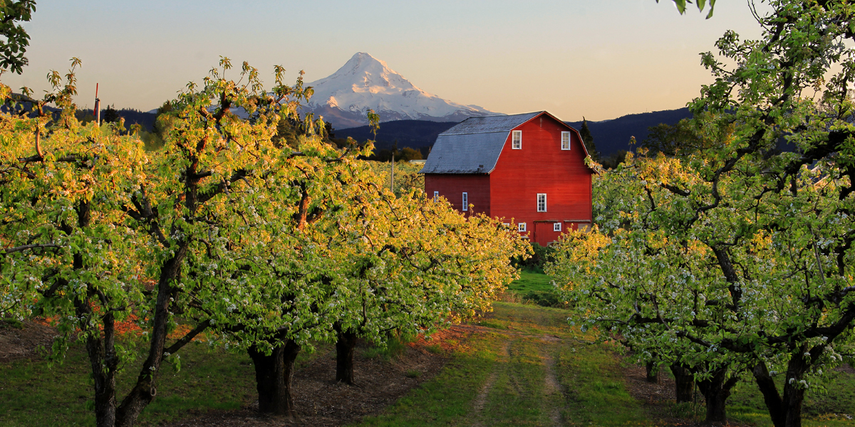19 best small towns in oregon cute oregon small towns to Best small town to live