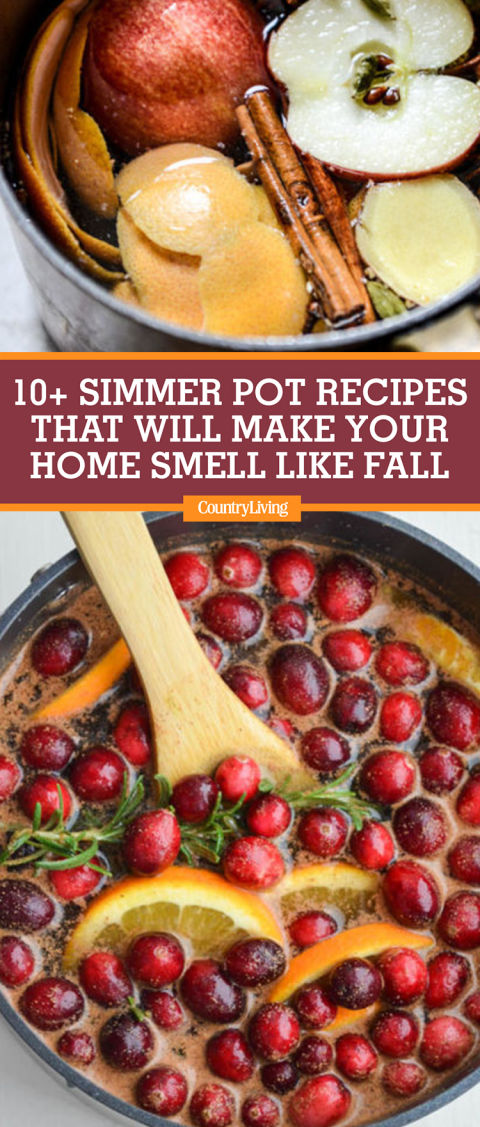 10 Homemade Stovetop Potpourri Recipes How To Make