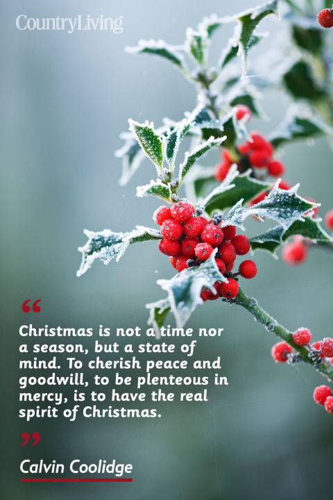 60 CHRISTMAS QUOTES THAT PERFECTLY CAPTURE THE SPIRIT OF THE SEASON Amazing Quotes For Christmas