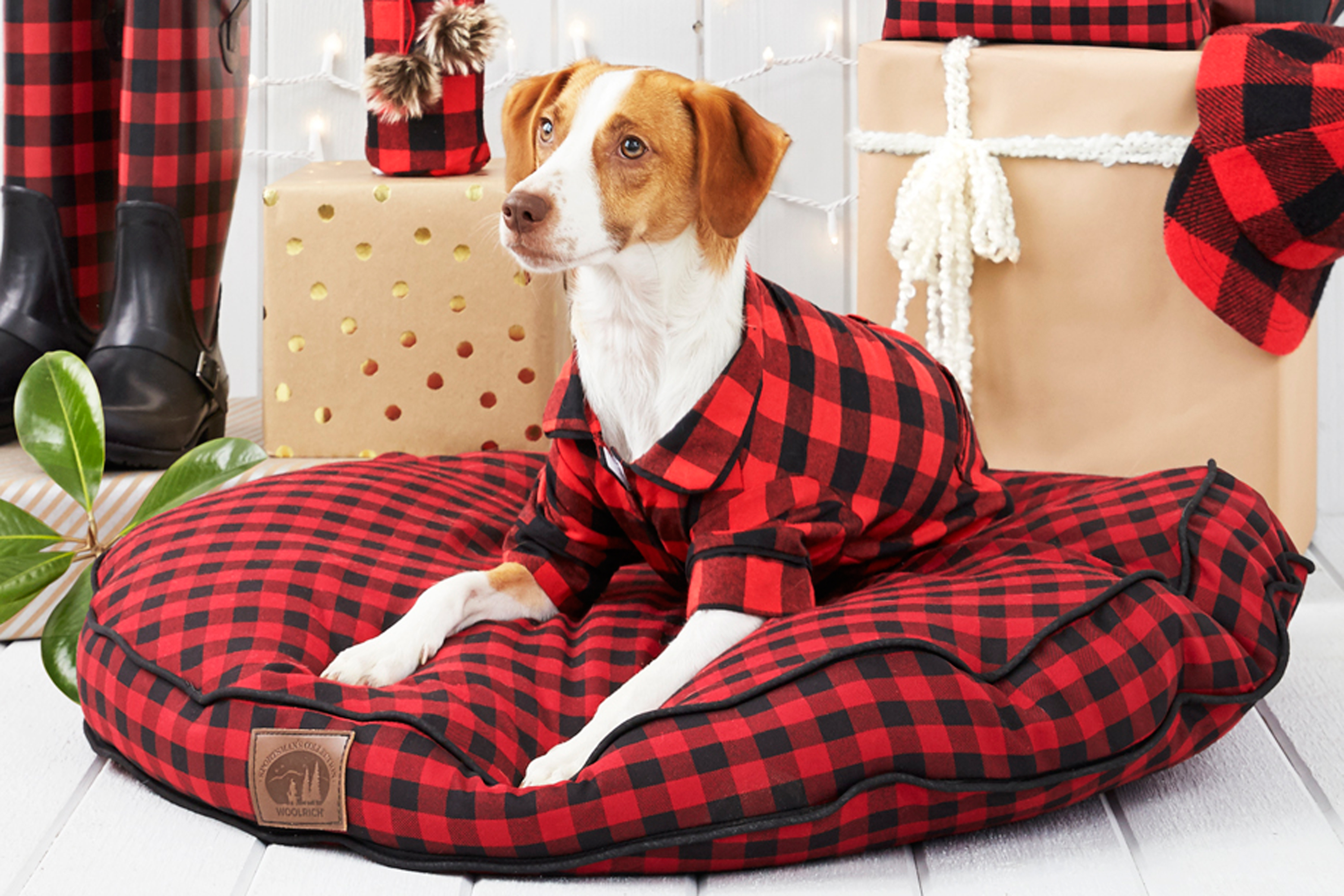 32 best gifts for dog lovers 2017 unique dog owner for Unusual dog gifts