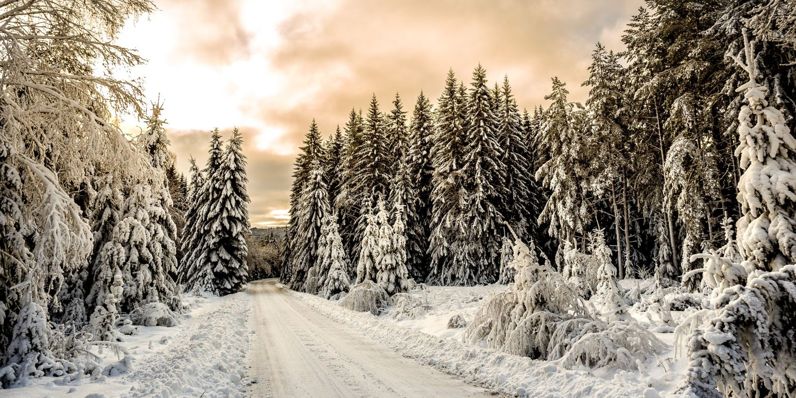 Winter Pictures - Breathtaking Photos of Winter Landscapes