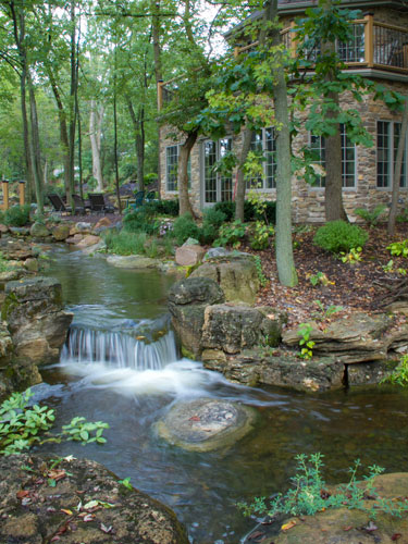 Cool Backyard Pond Ideas Aquascape Million Dollar Pond