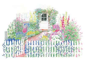 Cottage Garden Designs cottage garden main photo A Cottage Garden Plan