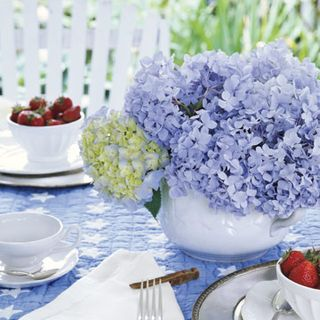 Spring Party Decorating Ideas