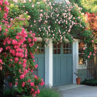 Cottage Style Garden Ideas english style front yard garden plan Heres How To Create The Charming English Style Garden Of Your Dreams