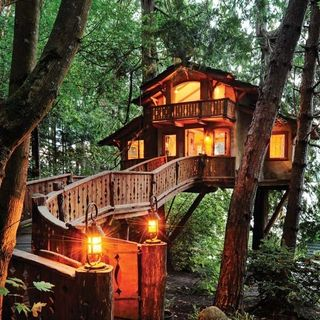take a step inside this unique seattle home nestled between two cedar trees - Treehouse Masters Tree Houses Inside