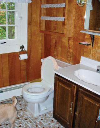 Thrifty bathroom redo bathroom makeover for 1890 bathroom design