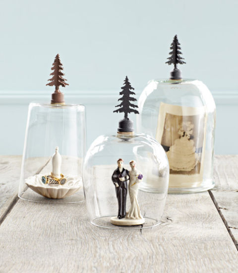 Decorating Ideas For Glass Domes