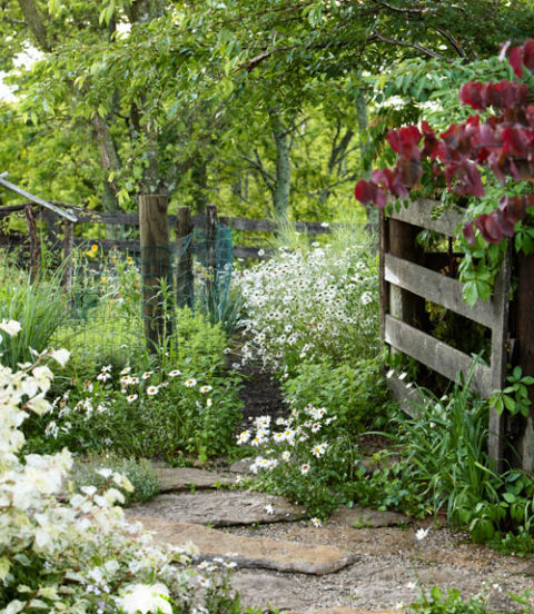 38 Homes That Turned Their Front Lawns Into Beautiful: Eddie Woods And Willy Brown Kentucky Farm