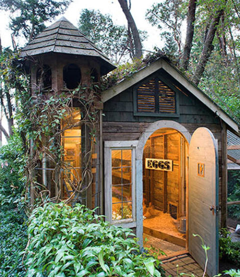 Renovated Garden Shed