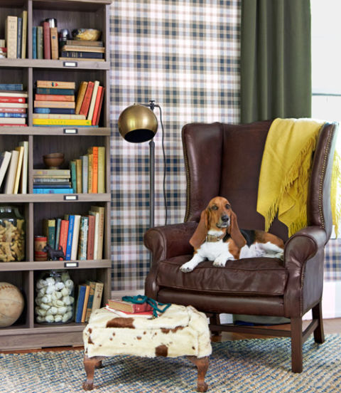 Dog friendly decorating ideas pet friendly living room for Dog friendly flooring ideas