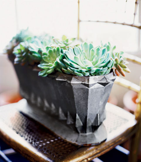 To keep hardy container container gardens, such as these succulents, from freezing, cover them with a tarp. Be sure to bring delicate potted plants inside.
