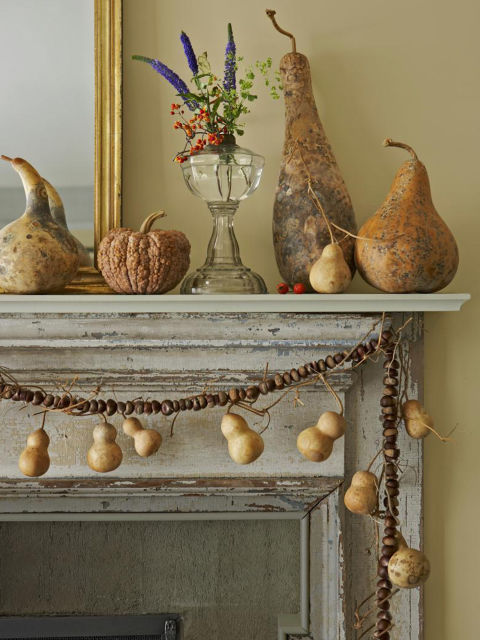 Dried gourds and squash form a still life on this mantel. Additional 'Tiny Bottle' gourds hang from a garland of farm stand chestnuts.