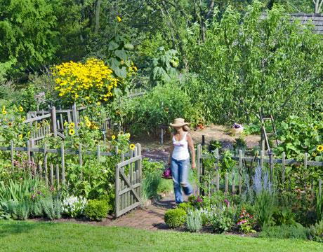 Pennsylvania garden - Country vegetable garden ideas ...