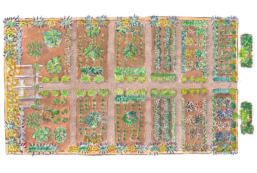 garden illustration - Garden Design Layout Plans