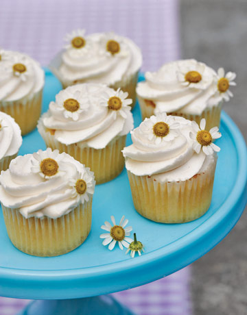 26 Best Cupcake Decorating Ideas Easy Recipes For & Cupcake Decorating Ideas Recipes - Elitflat