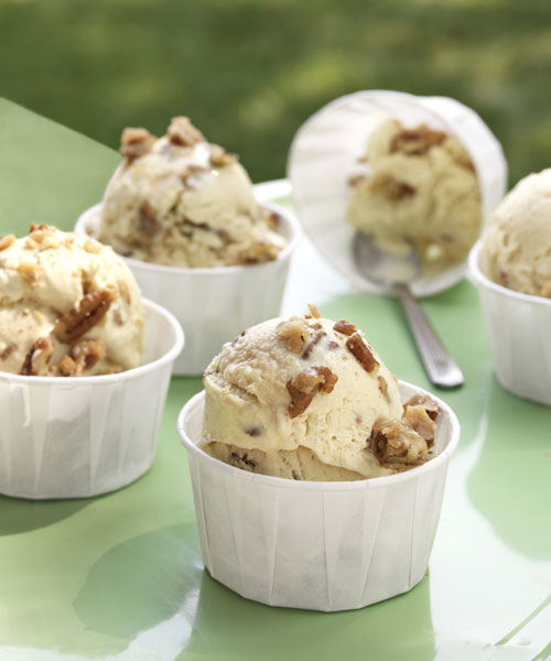 30 Easy Homemade Ice Cream Recipes