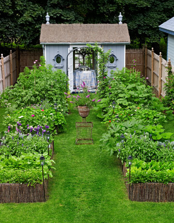 landscaped backyard with shed - Backyard Vegetable Garden Ideas Pictures