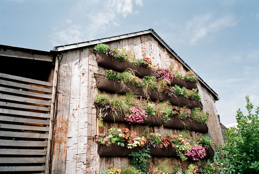 Cover A Huge Expanse Of Wall With Large Planting Pockets Of Heavy Duty  Recycled Fabric.