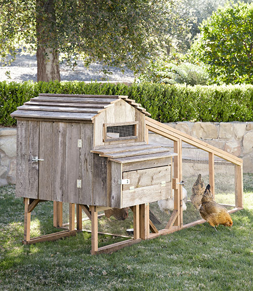 Rustic Chicken Coop on garden sheds for sale ia