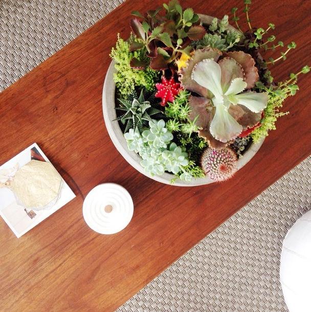Easy Succulent Garden Diy Succulent Centerpiece