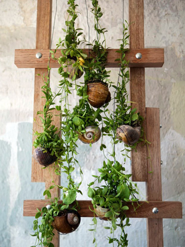 Garden Ideas On Pinterest a few old pallets used in a garden love it Our Friends At Pinterest Shared The Seasons Most In Demand Outdoor Garden Trends And The Boards You Should Start Following Now