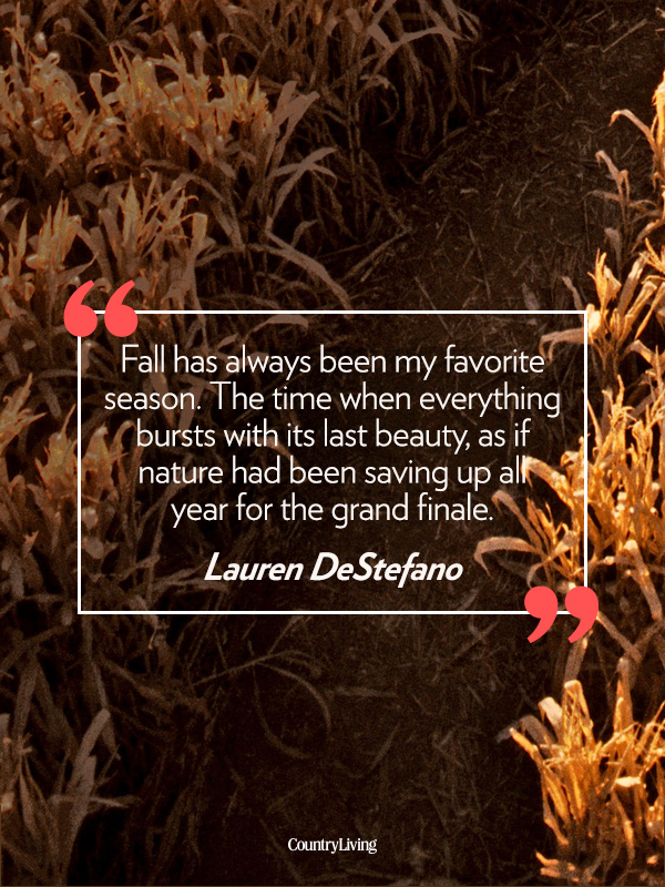 Image result for fall quotes