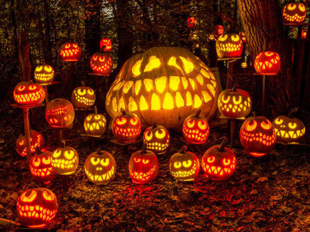 2 jack o lantern spectacular - Best Halloween Celebrations