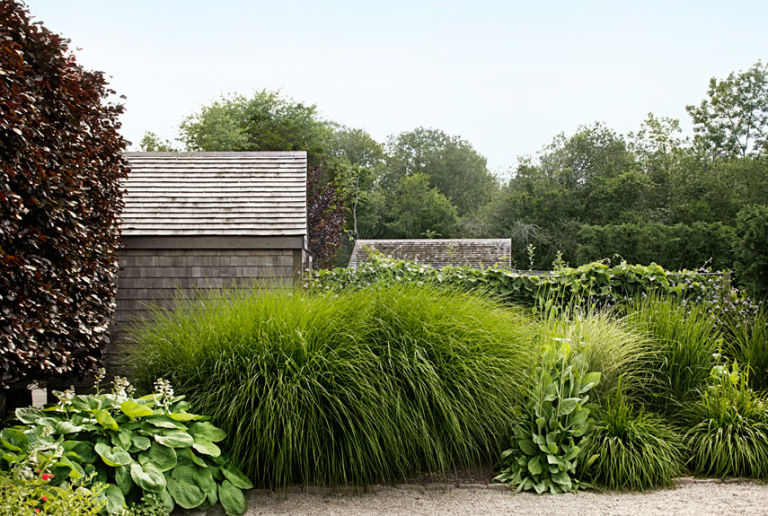 Landscaping tips from sean conway garden design ideas for Large grasses for gardens