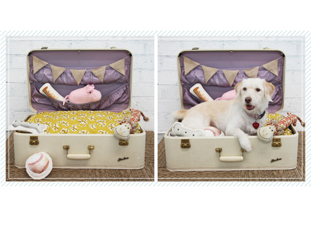 Repurpose a vintage suitcase into a cozy spot for your pup to hang out by padding the bottom with a foam cushion covered in a fun fabric as seen in this simple DIY project. Decorate it with a burlap pennant banner and tuck his favorite toys in the luggage pockets. Get the tutorial at Ruche.