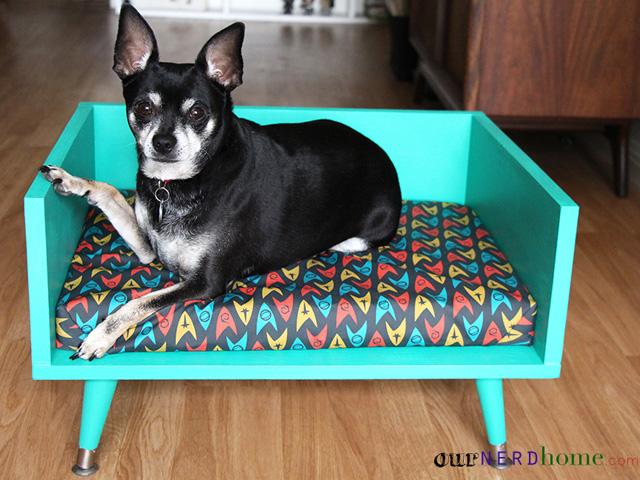 Adorable DIY Dog Bed Cheap Pet Beds - Diy dog beds
