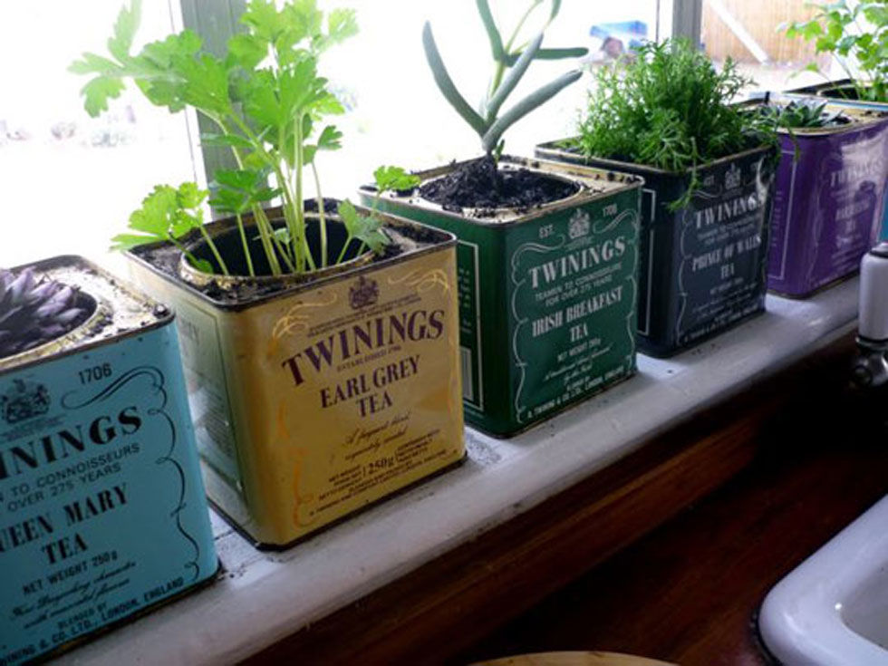 Plant herbs in vintage Twinings tea tins to start a windowsill garden that will freshen up your entire kitchen. (Add rocks to the bottom of the tins to let the herbs' roots breathe.) Get the tutorial at Apartment Therapy.