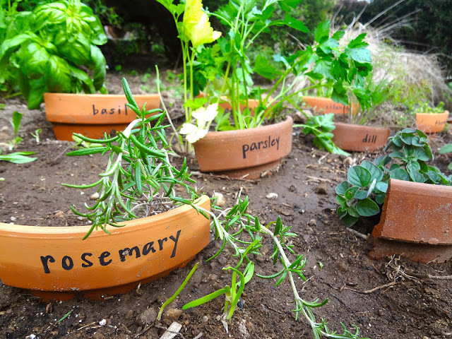 The curves of cast-aside pot rims plant perfectly into soil to label herbs or veggies in your backyard plot. width=