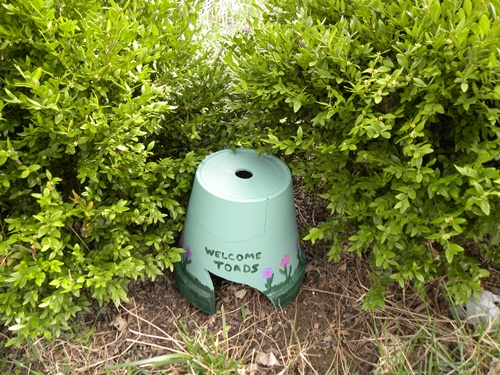Flipped upside down, a planter with a missing chunk turns into a home sweet home for toads. They're attracted to the extra shelter (try adding a water dish, too), and will help keep pests, like slugs, at bay. See more at The Home and Garden Cafe »