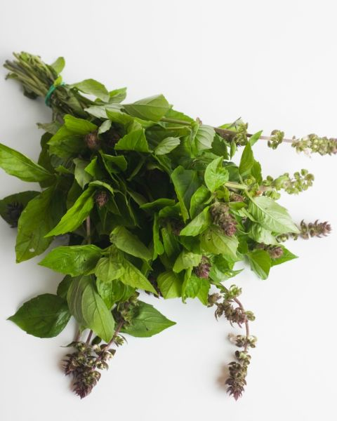 "This herb isn't often grown to give as a bouquet (it's more of a pizza topping than a floral centerpiece), and maybe that's a good thing — according to the Victorians, who didn't care for the strong flavor, it means ""hate."""