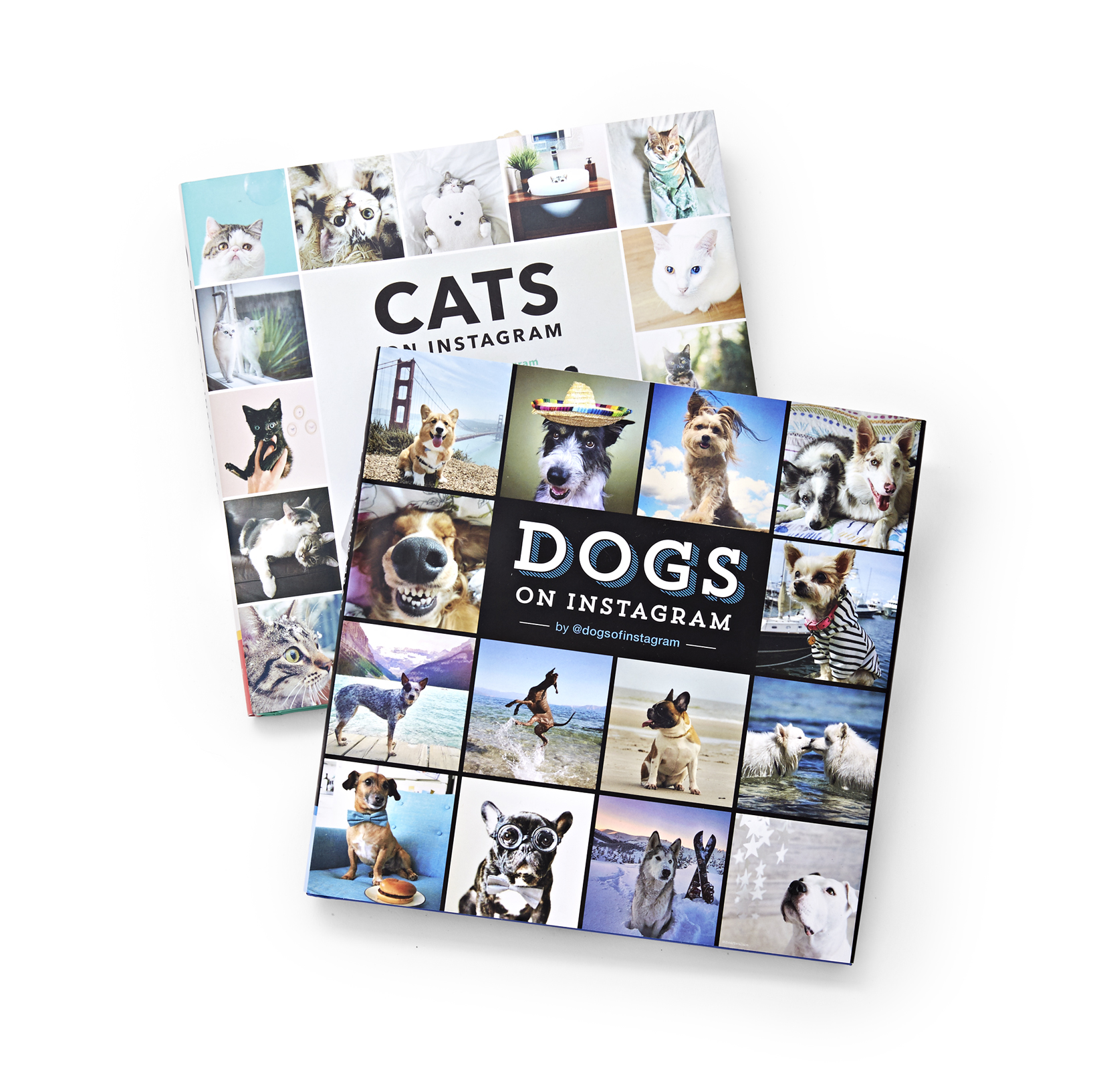 32 Best Gifts for Dog Lovers 2017 Unique Dog Owner Christmas