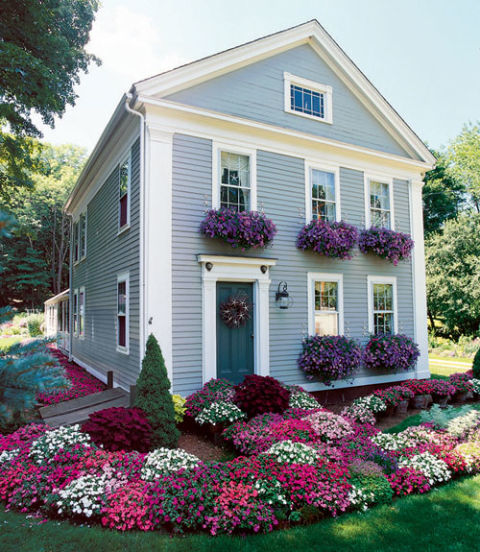 Overflowing with your favorite flowers, window boxes are a irresistible draw for the eye. Consider planting flowers in a shade that complements the color of your home. Or, for dramatic effect, mix in a second plant that picks up your trim color.